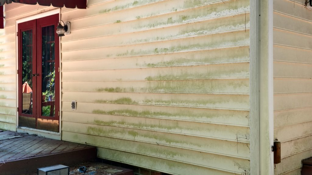How To Clean Algae Off Vinyl Siding Vmax Custom Homes